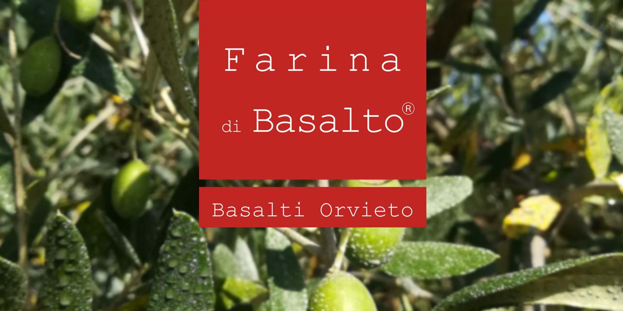 Articolo-farina-di-basalto-olivo-1-1280x640.png