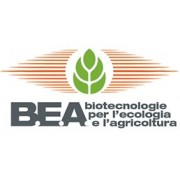 B.E.A.